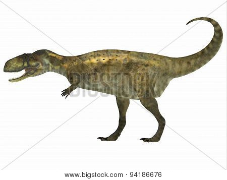 Abelisaurus Side Profile