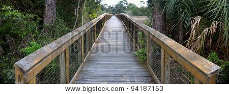 Walkway over the marsh lands