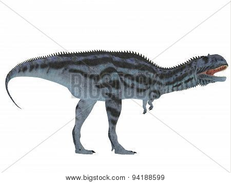 Majungasaurus Side Profile