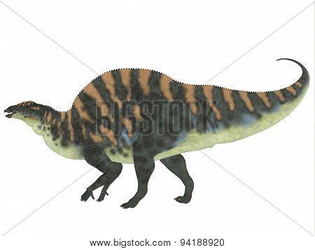 Ouranosaurus Side Profile