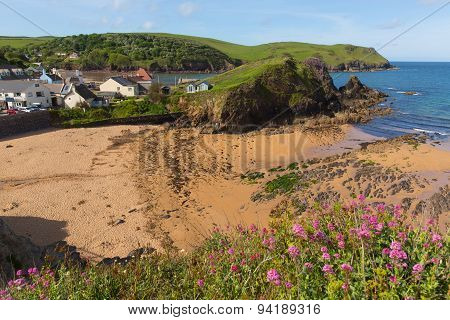 Warm summer weather drew visitors to the beautiful South Devon coastal village of Hope Cove