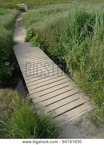 Beach Sandune Bridged Pathway