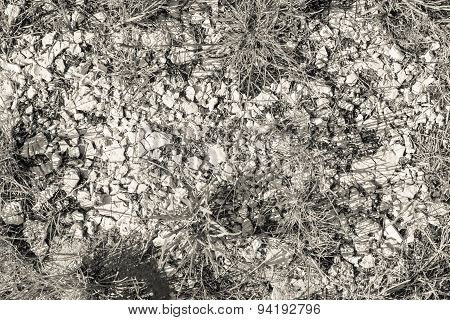Beige Color Crushed Plaster Stone In A Grass