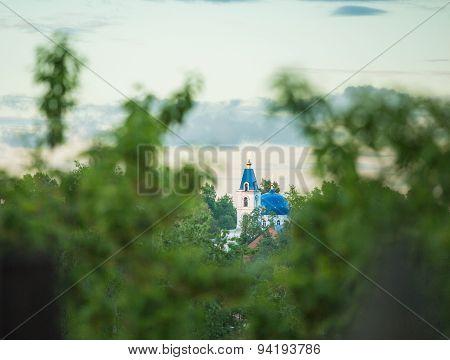 Domes of orthodox church seen through trees