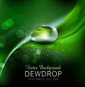 stock photo of paysage  - Vector green background with leaves and dew drops on the dark background - JPG