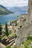 picture of marina  - View of the roofs of the houses and the marina with a fortress wall in the old town of Kotor Montenegro - JPG