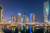 pic of marina  - Dubai marina skyscrapers during night hours - JPG
