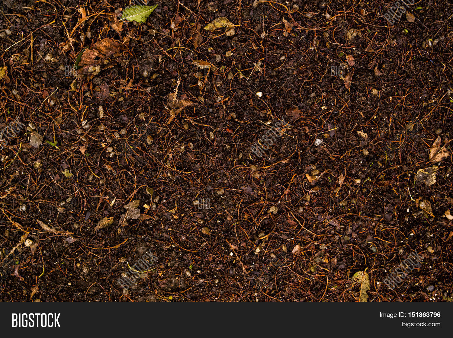 Soil ground wet soil texture wet ground dry grass on for Soil texture