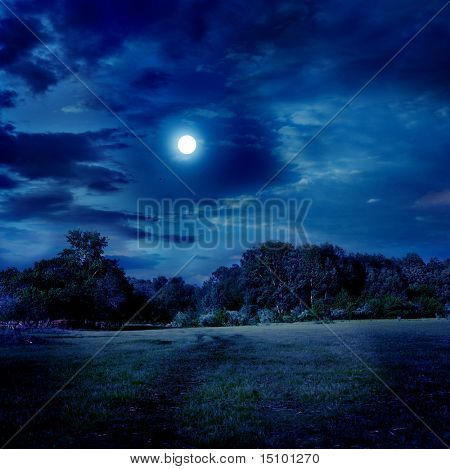 moonlight landscape
