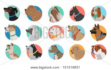 poster of Set of dog round icons. Dog breed set. Different type of dogs. Icon collection for dog club, pet clinic and pet shop. Dog avatar. Isolated vector illustration on white background.