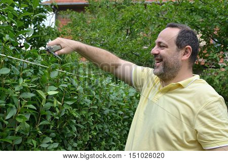 Man Cutting A Top Of Hedge