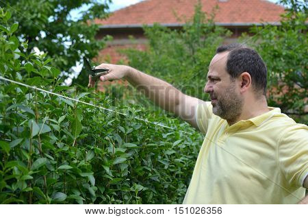 Pruning The Hedge