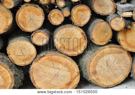 Wood cut into logs and stacked in a pile waiting for winter