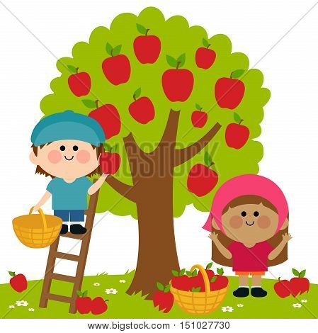Two children, a boy and a girl picking apples under an apple tree. Boy is on a ladder picking apples.