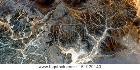 Fantastic winter forest in the desert, surreal landscape from the air, petrified bird's eye view, forest fantasy, mirage in the desert, textures and colors African forest,