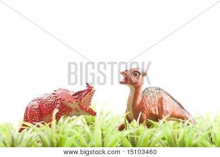 Two Herbivore Toy Dinosaurs