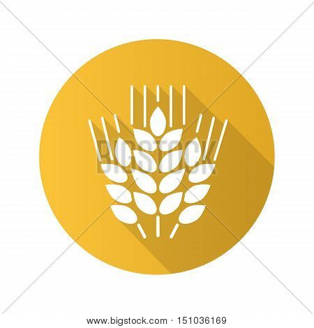 Wheat ears flat design long shadow icon. Spikes of rye. Barley. Vector silhouette symbol