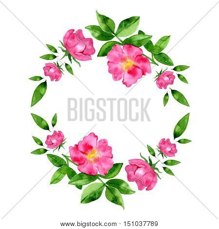Watercolor hand drawn wild rosehip flower and leaves composition for romantic background. Round wreath.