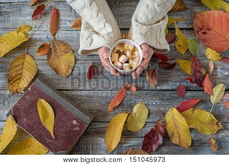 Woman holding cup of hot chocolate. Hot Chocolate in wooden table. Woman having a cup of coffe.