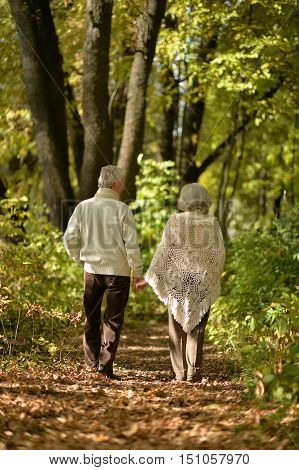 Happy elderly couple goes away through the alley in autumn park