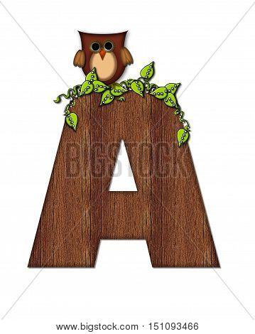 Alphabet Woodsy Owl A
