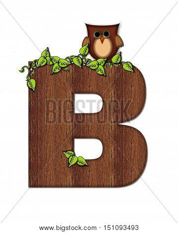 Alphabet Woodsy Owl B
