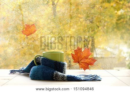 green circle in the scarf the window with maple leaves and drops after rain in autumn / season when you need warm drinks