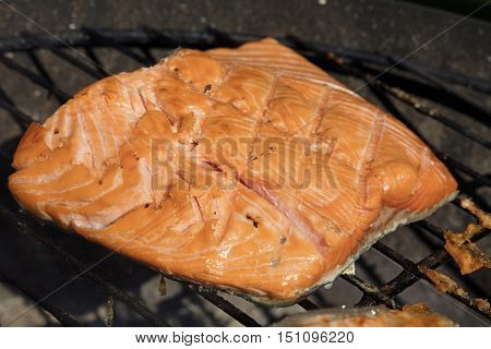 Grilled Salmon Fish Fillet Barbecue Grill Cooking