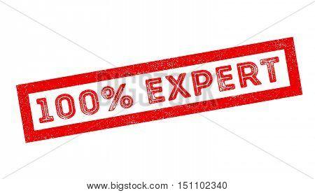 100 Percent Expert Rubber Stamp