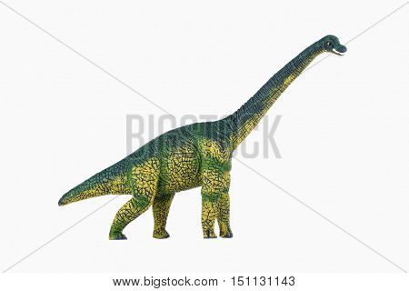 Dinosaur Toy diplodocus , isolated at white background
