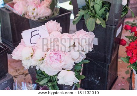 Bouquet of Peony on marketplace Provence France