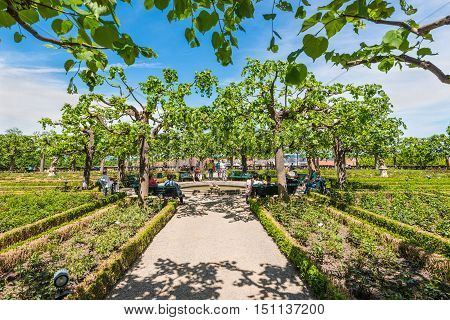 Bamberg Germany - May 22 2016: The Residence rose garden in the world culture heritage city of Bamberg Franconian Landmark in Bavaria Germany.