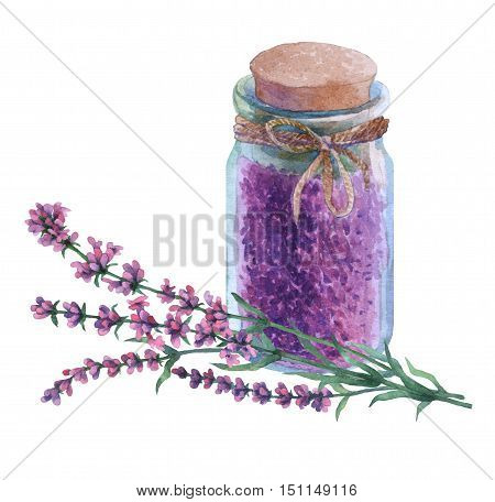 Dried lavender petals  in a  glass vial. Watercolor hand painting illustration on isolate white background.
