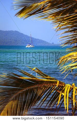 Sailboat in the Gulf of Thailand framed by palm leaves
