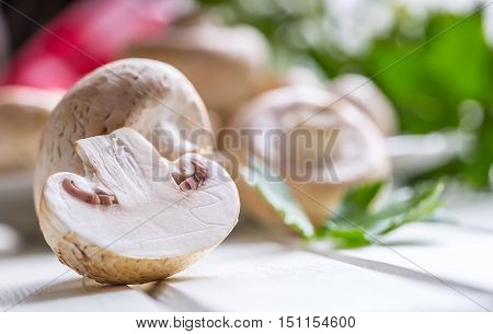 Mushroom. Champions mushrooms in different positions with herb decoration.