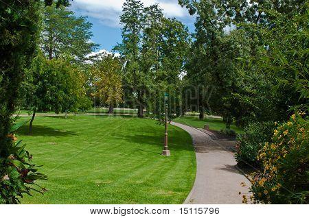 Path In A Botanical Gardens
