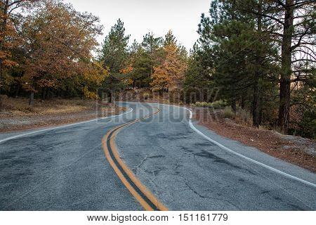Winding mountain road with fall color trees
