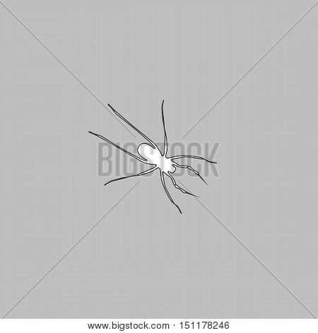 Spider Simple line vector button. Thin line illustration icon. White outline symbol on grey background