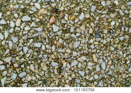 Picture of small gravels on the wet ground use as background