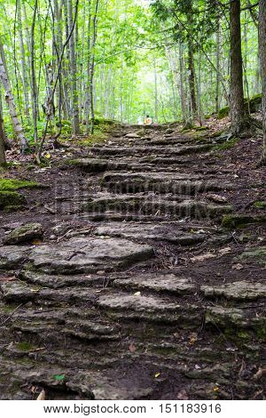 a path of rock steps leading into the forest on the Bruce Trail