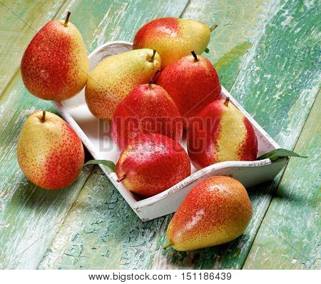 Heap of Ripe Yellow and Red Pears with Leafs in White Wooden Tray closeup on Cracked Wooden background