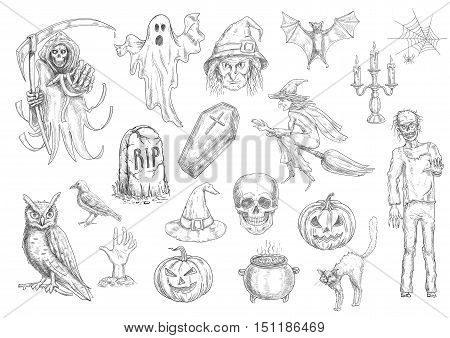 Halloween holiday creepy and horror sketch symbols of pumpkin lantern, skull, coffin, witch on broom, cauldron, cat, owl, bat, tomb, ghost. Vector retro elements for greeting cards, decoration design