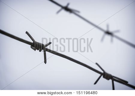 Rusty barbed wire on autumn sky background