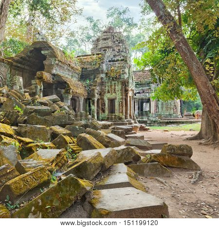 Ta Prohm famouse ruins with pile of stones in moss
