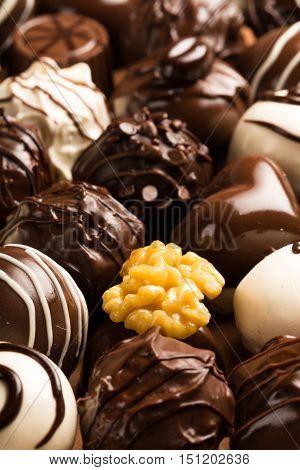 Dark & milk chocolate candies / pralines / truffles, assorted