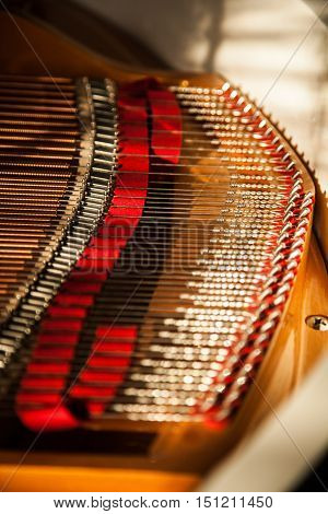 Inside of the Grand Piano - Close Up