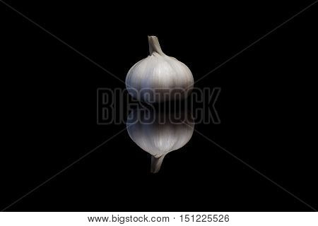 Garlic isolated on a black reflective background