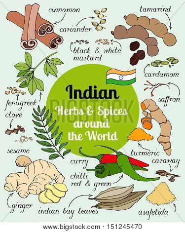Vector set of hand drawn Indian herbs and spices.
