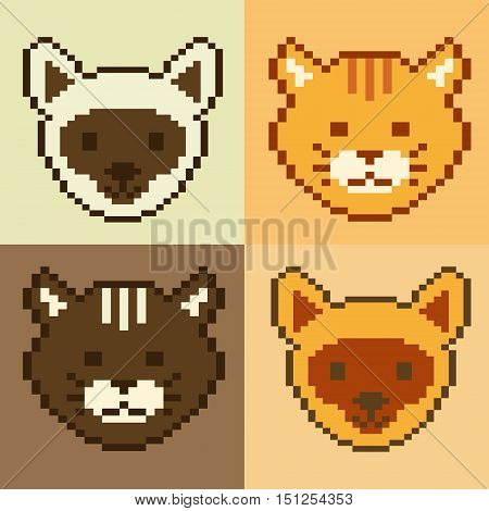 Poster pet face pixel art 8 bit with different color of cat pixel art. Pet vector kitty. Kitten icon illustration. Cartoon pet design.