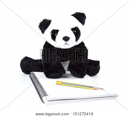 Panda bear look at white note book and pencil on white isolated.